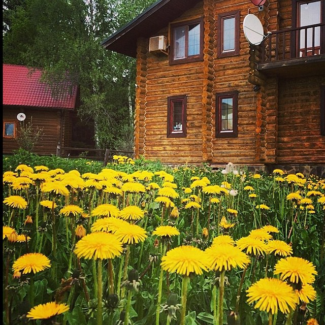 дома на Новорижском шоссе