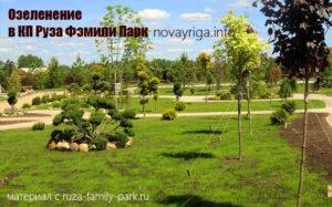 Ruza-Family-Park-ozelenenie