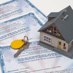 Нотариусы получили право на быструю регистрацию в Росреестре недвижимости граждан.